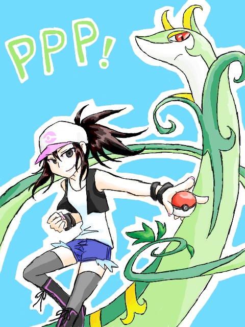 Partner Pokemon Project!